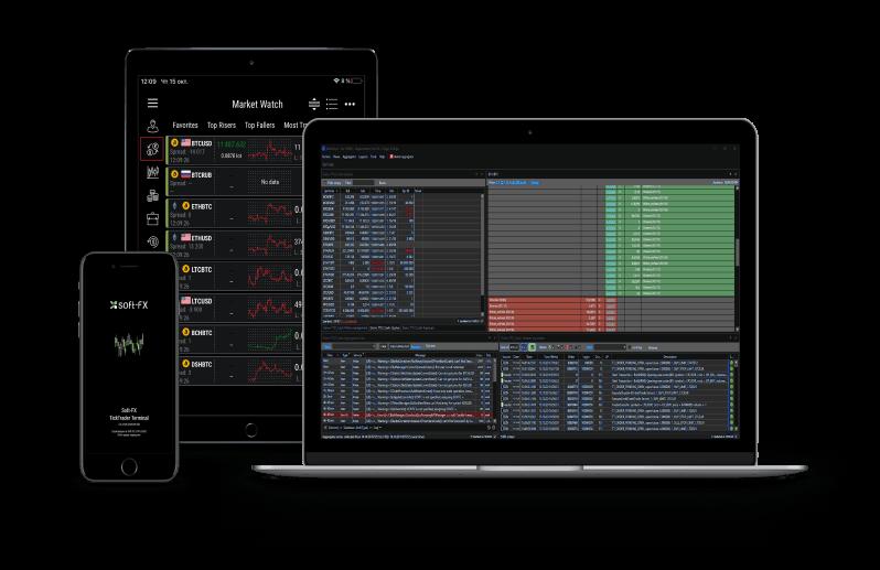 Soft-FX multi trading terminal